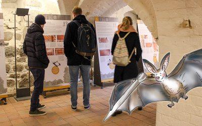 """Auf Entdeckertour in den Ausstellungen mit Albi der """"Kleinen Fledermaus"""""""