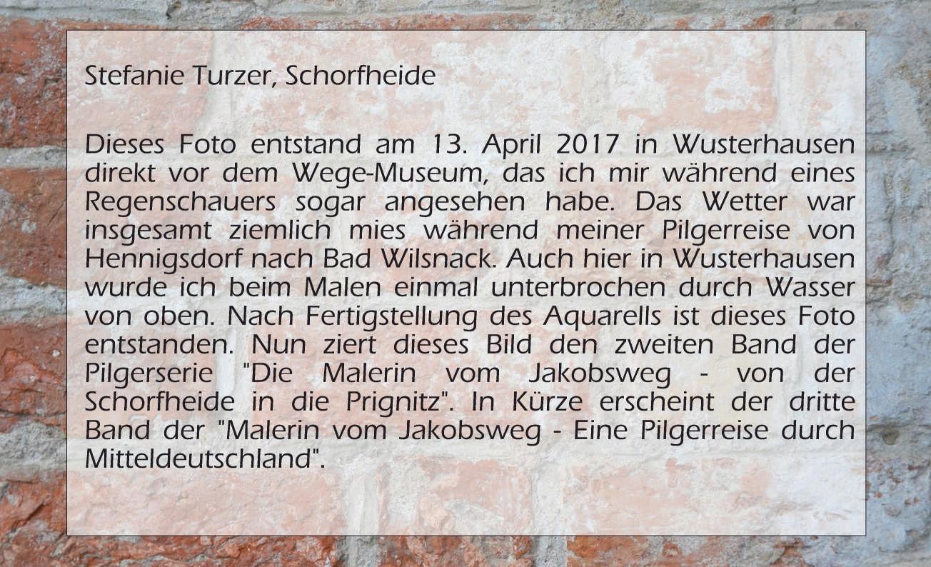 Stefanie Turzer, Die Malerin